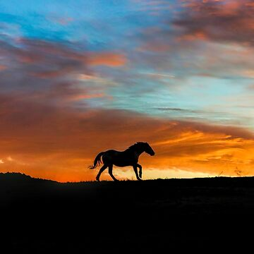 Beautiful Running Horse in a Southwestern Sunset by LazyL