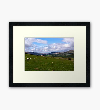 Wensleydale Framed Print