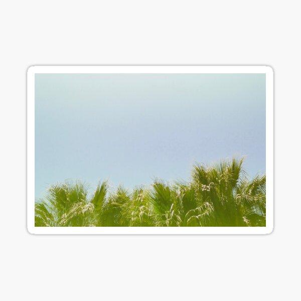 Wavy Palms Sticker