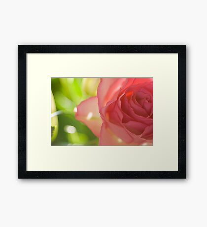 Pink n Green Framed Print