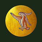 Eagle and sun by MeyrellesMartin