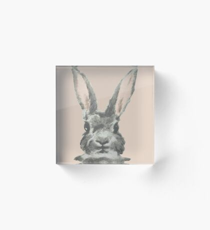 Bunny Acrylic Block