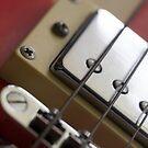 Guitar strings by Ian Moran