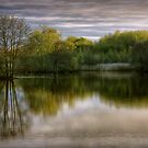Reflecting by Jon Baxter