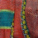 Orange Fish Net. by Todd Rollins