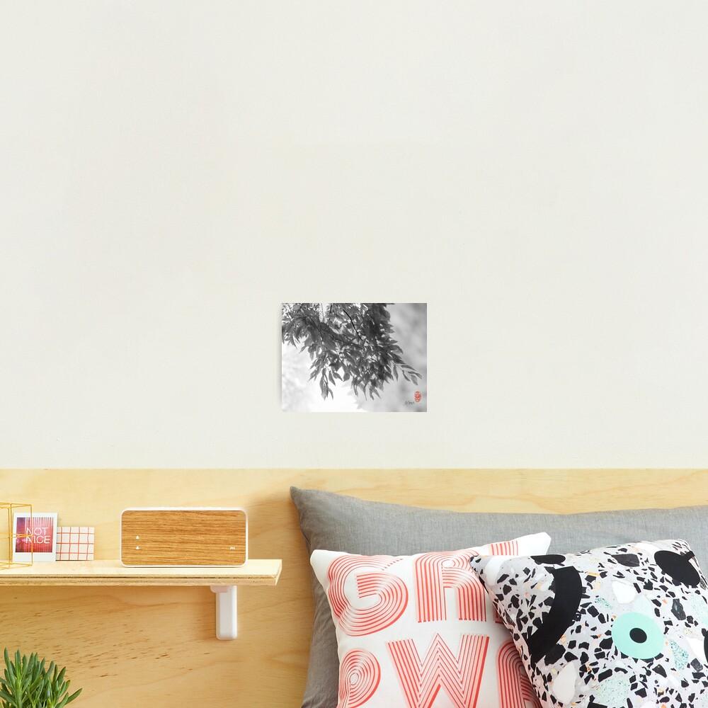 Light as Air Photographic Print