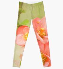 Coral & Green Watercolor Floral Leggings