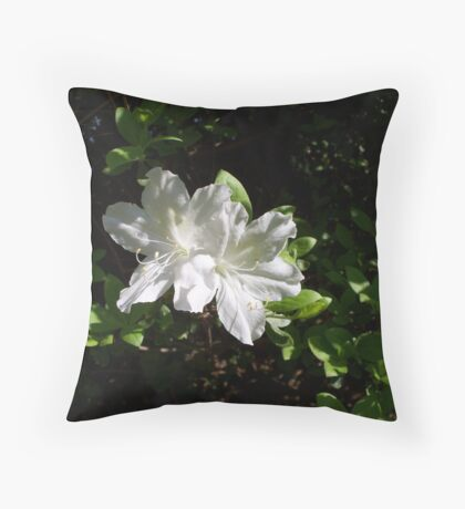 What about White 1 Throw Pillow