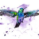 Hummingbird 1 by Beau Singer
