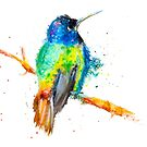 Hummingbird 2 by Beau Singer