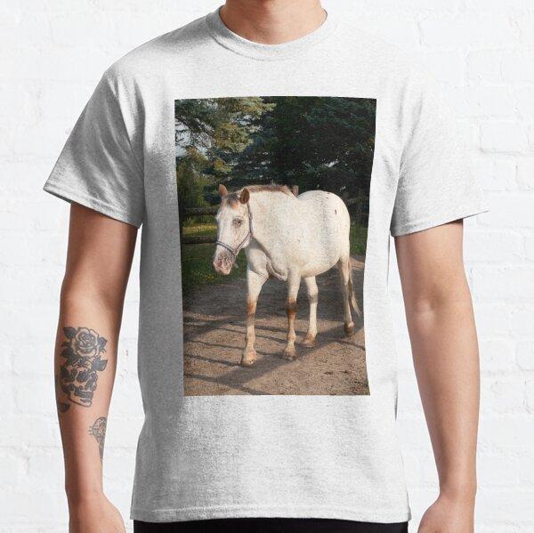 Kilty - NNEP Ottawa ON Classic T-Shirt