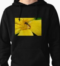 busy visitor Pullover Hoodie