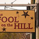 Fool on the Hill (2) by Barb White