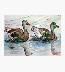 The painting..Mallards maybe? Photographic Print
