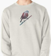 Forest Robin on a Branch  Pullover Sweatshirt