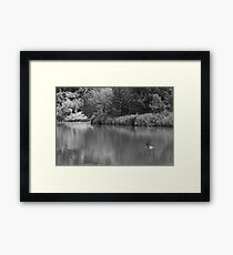The Canadian  Framed Print