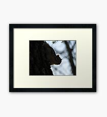 Furry Forest Friend Framed Print