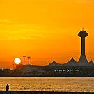 Arabian Sunset  by Elvira