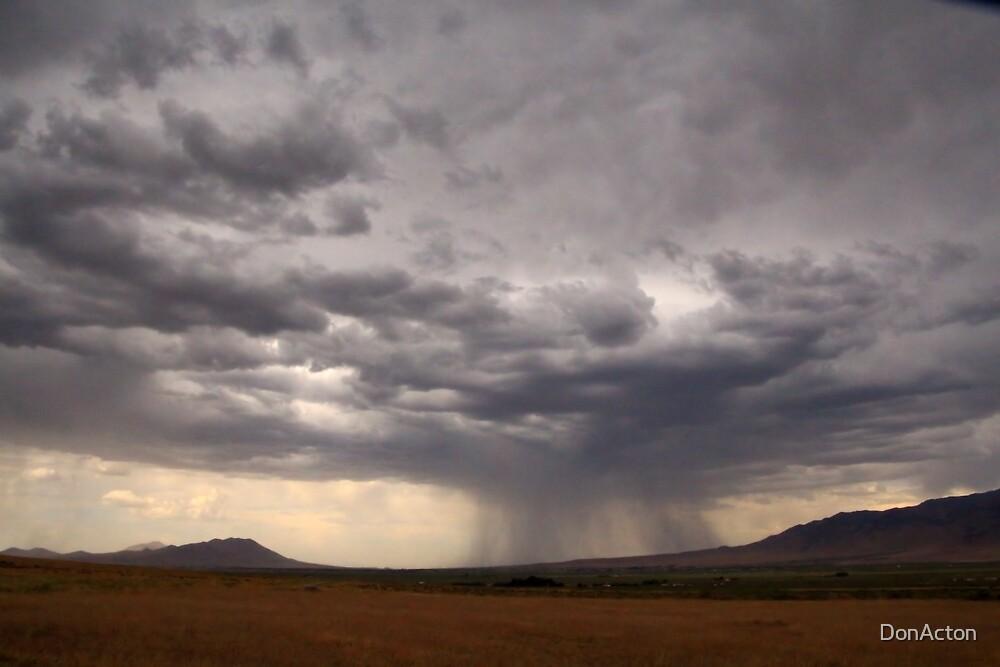 summer storm Winnemucca june 2015 by DonActon