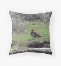 Golden Eagle in Sagebrush Throw Pillow
