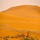 Red Dunes by Elvira