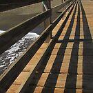 Waimea Pier by Diana Forgione