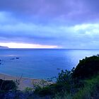 Waimea Bay by kevin smith  skystudiohawaii