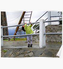 Rain Catcher, Quito, Ecuador Poster