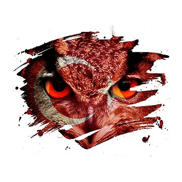 Turkey Flag and Menacing Owl by ockshirts