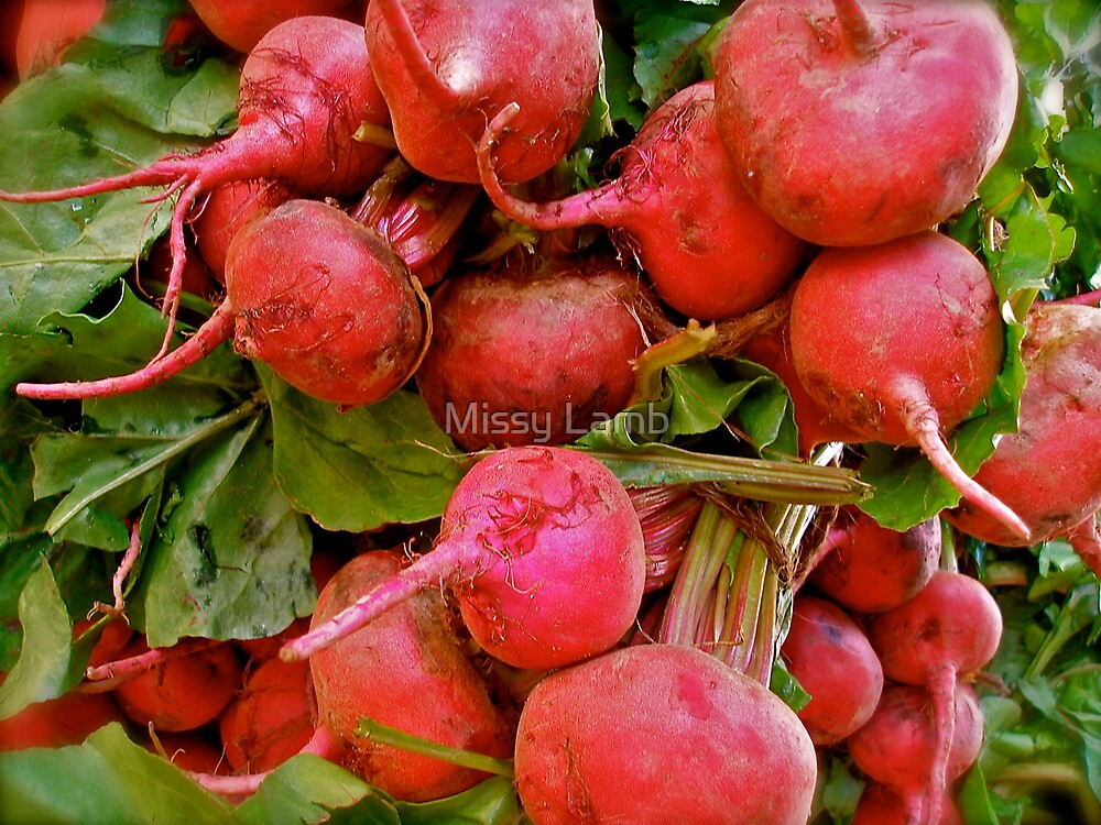 Radishes by the bunch! by Missy Lamb