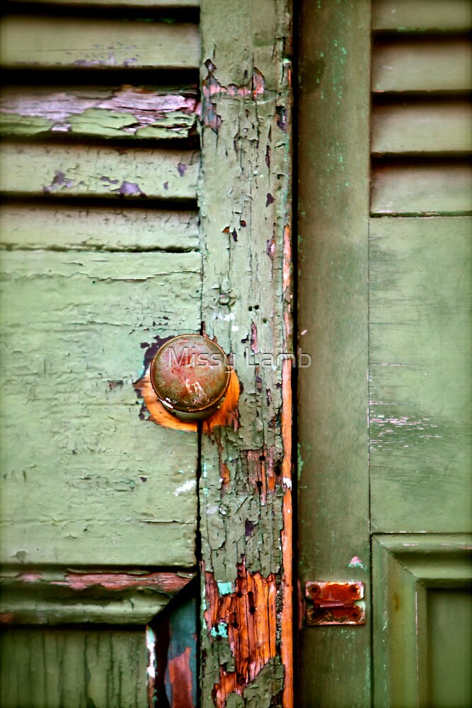 If This Door Could Talk! by Missy Lamb