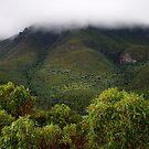 stirling ranges - western australia by col hellmuth