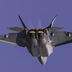 F22 Raptor by shaynetwright