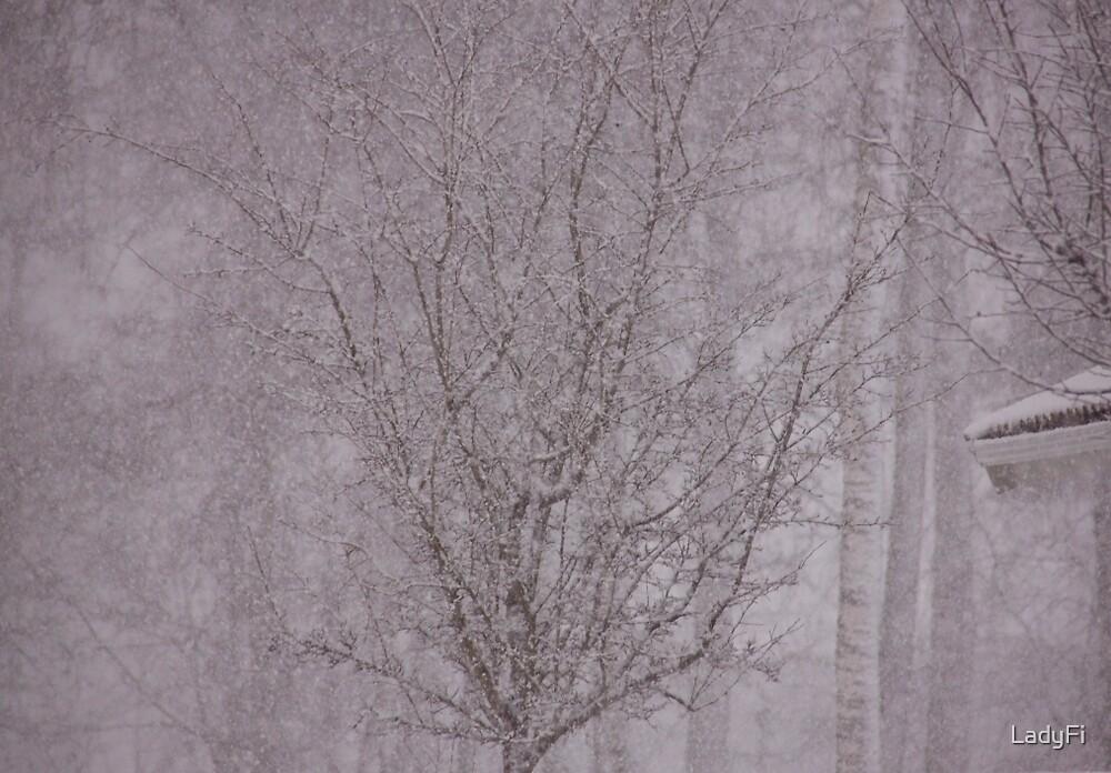 Snowy haiku by LadyFi