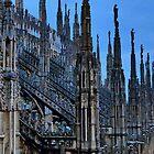 Gothic Spires by Anthony Ogle