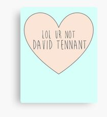 Lol ur not David Tennant Canvas Print