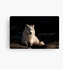 Relaxing Moment Canvas Print