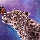 Leopard und Schmetterling von AnnaShell
