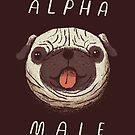 Alpha-Mops von louros