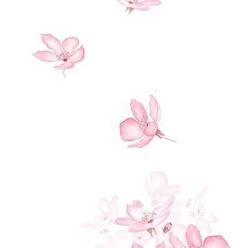 cayendo rosa flor de cerezo flor acuarela 2019 de ColorandColor