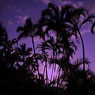 Violet Palms by Sean Jansen