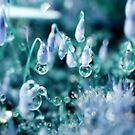 Mystic Crystals by Stephanie Hillson