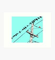 Assimilate - An Illustration of Birds on a Wire by Brooke Figer Art Print