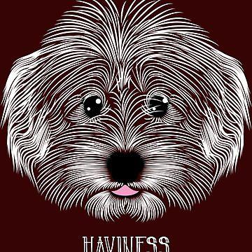 Havanese is Haviness by ressamac