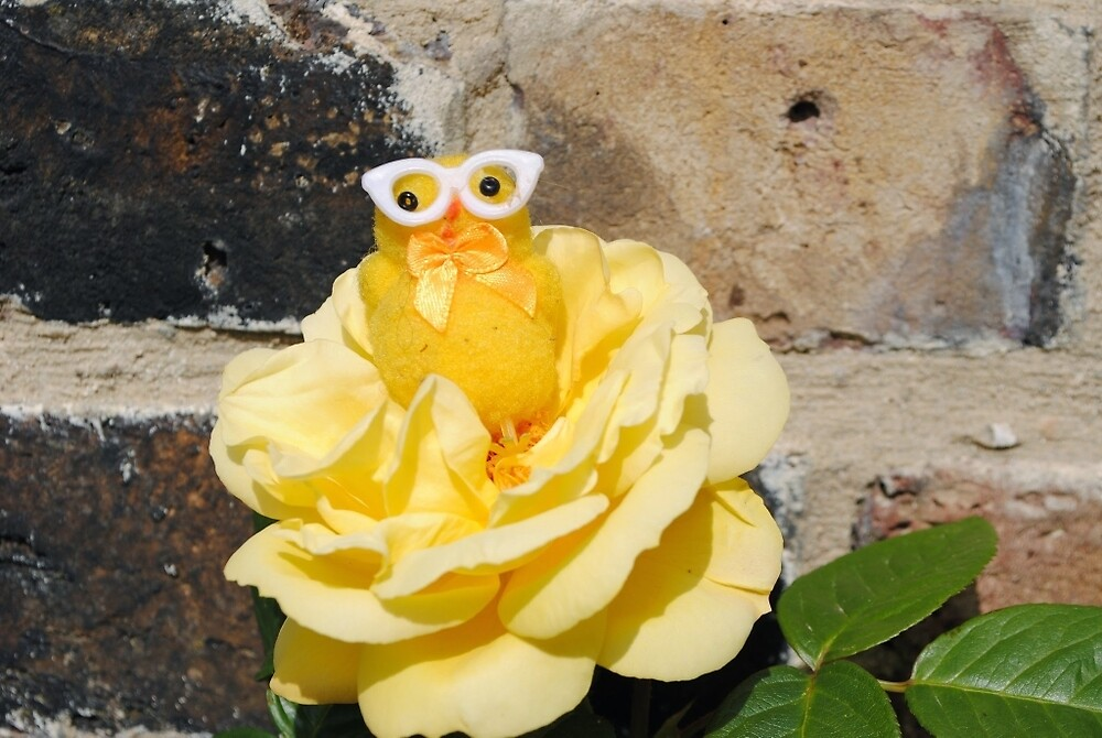 Chick on Rose by Humperdink