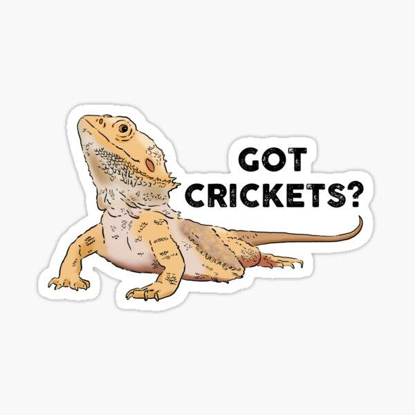 Funny Bearded Dragon, Got Crickets?, Bearded Dragon Lover Sticker