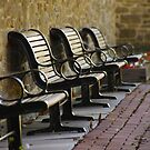 Benches - Chrysler Farm, Morrisburg, Ontario by Tracey  Dryka