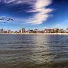 Cherry Grove Beach with Pelicans by TJ Baccari Photography