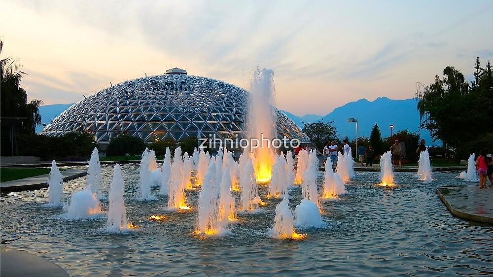 Queen Elizabeth Park by zihniophoto