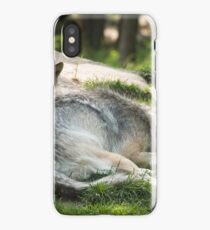 Timber wolf and pup iPhone Case/Skin